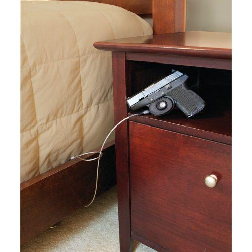 Gun Locks
